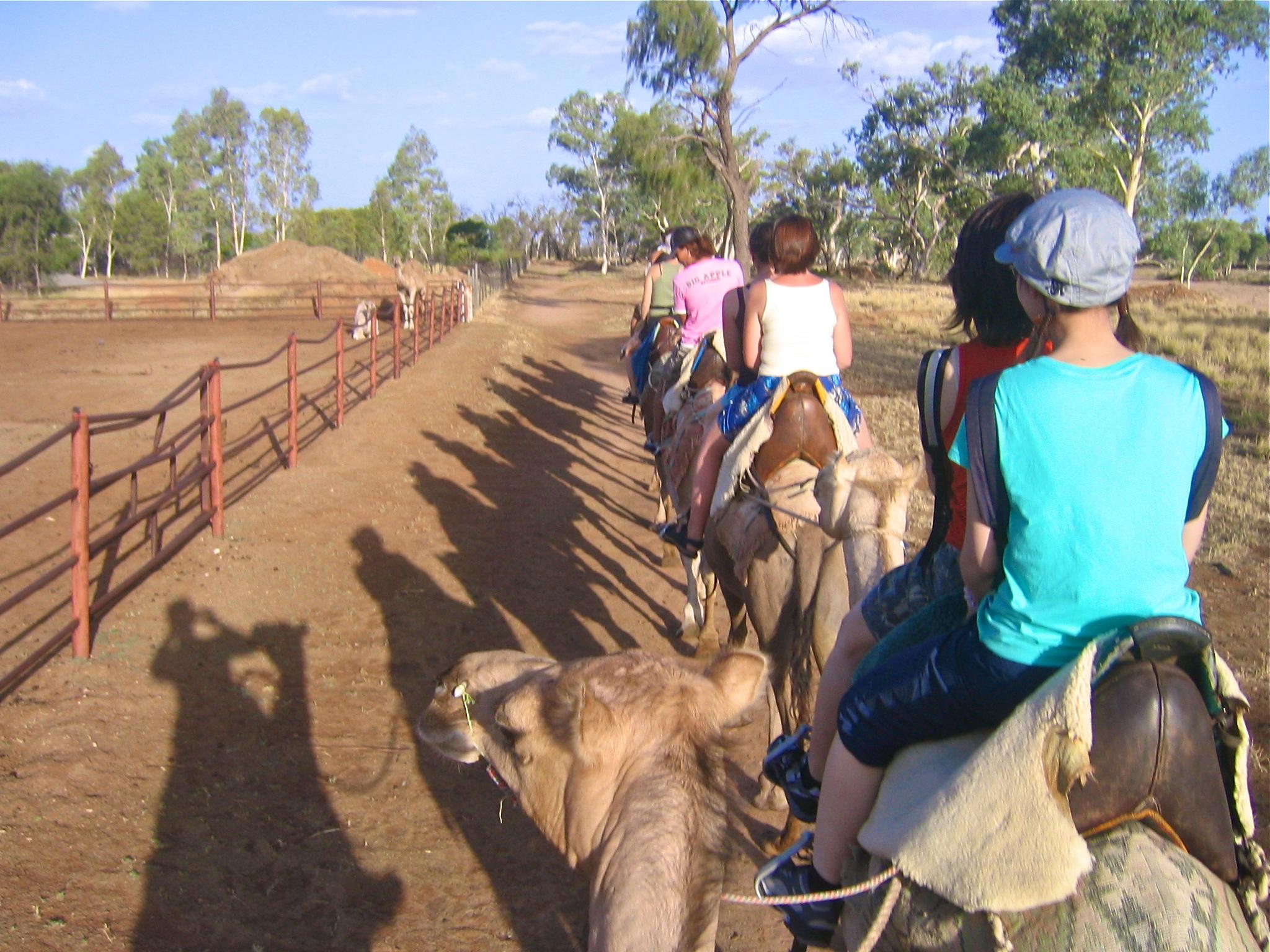 The Australian Outback Australia Alice Springs camel sunset aroundtheworldwithjustin.com
