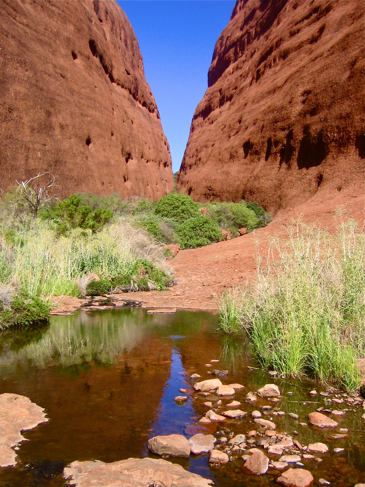 The Australian Outback Australia Kata Tjuta The Olgas aroundtheworldwithjustin.com