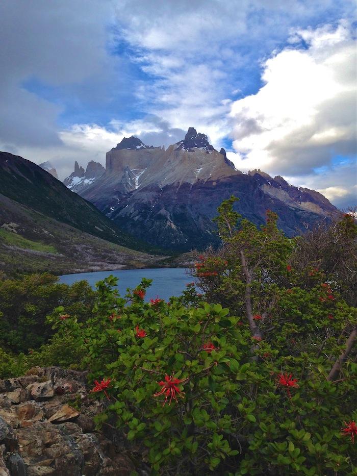 W Trek Torres Del Paine Chile Patagonia trekking aroundtheworldwithjustin.com