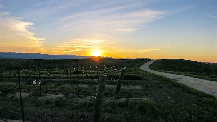 Best Paso Robles Wineries California wine tasting aroundtheworldwithjustin.com
