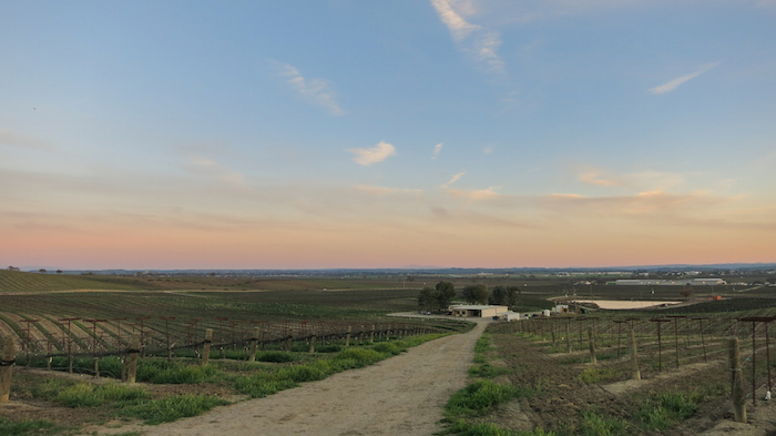 Best Paso Robles Wineries California wine tasting Vineyard View aroundtheworldwithjustin.com