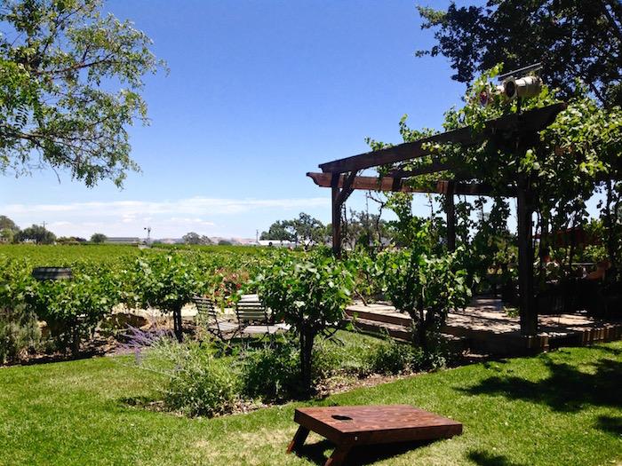 Best Paso Robles Wineries California wine tasting Castoro aroundtheworldwithjustin.com
