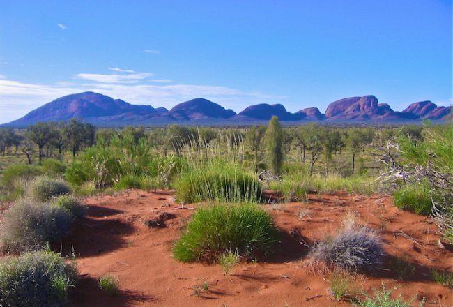 Solo Traveler Australian Outback Australia Justin Walter Survivor Australia