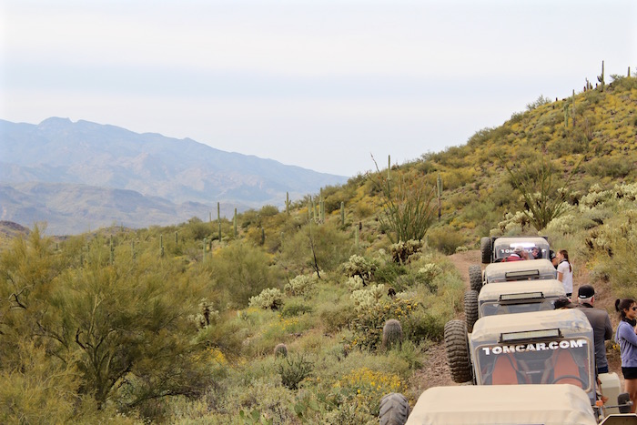 Desert Wolf Tours Tomcar ATV Tour things to do in scottsdale arizona phoenix