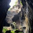 Simud Hitam Gomantong Cave Sabah Malaysia Borneo
