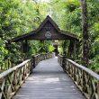 Sukau Rainforest Lodge Sabah Malaysia Borneo