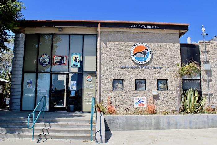 Marine Mammal Care Center Los Angeles Kind Traveler World Oceans Day Terranea Resort Palos Verdes