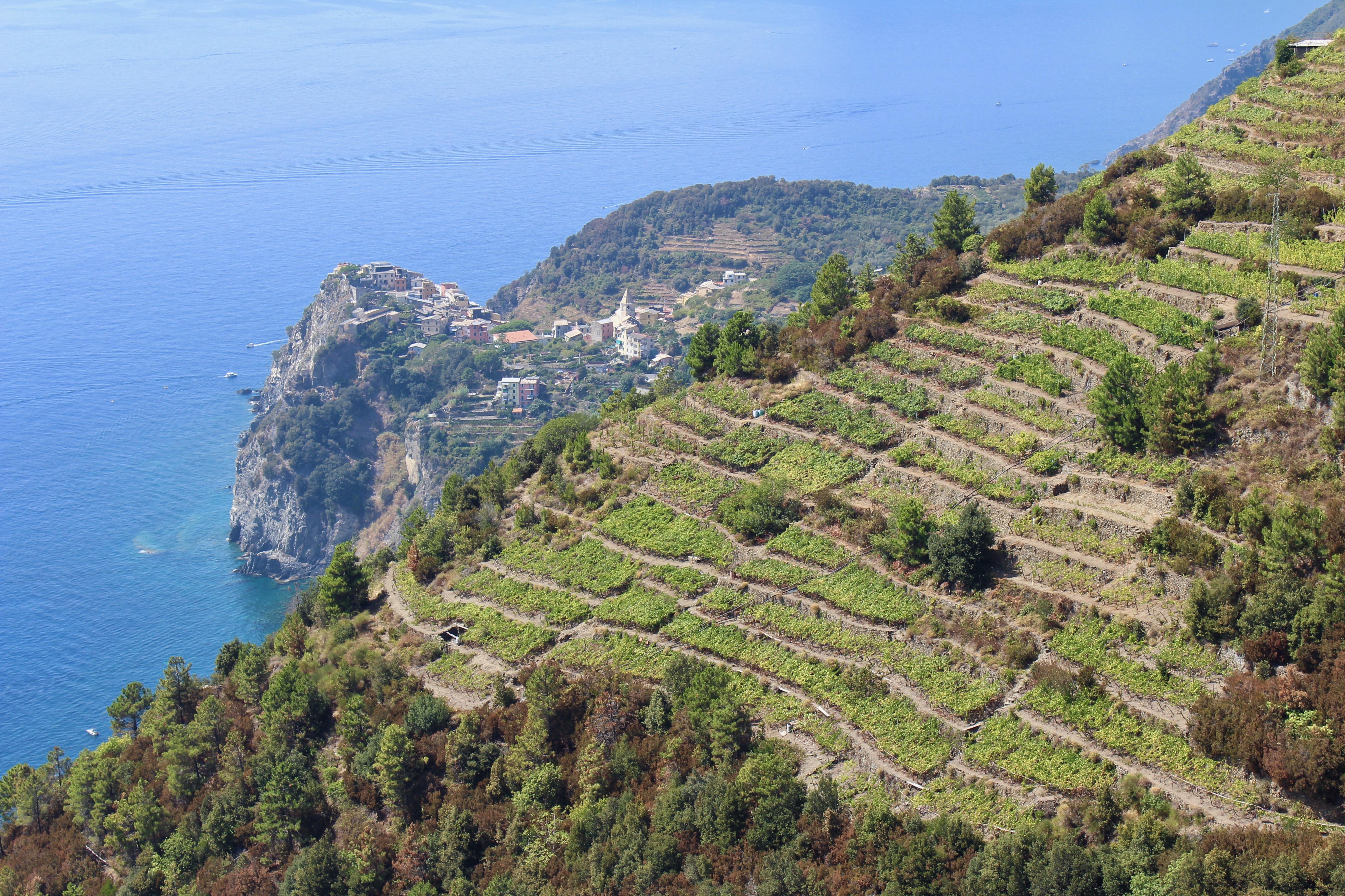 Cinque Terre Hiking Italy Travel Guide Manarola Corniglia