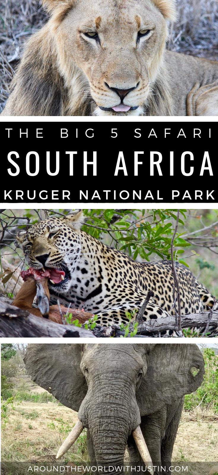 Sabi Sabi Private Game Reserve Kruger National Park Big 5 Safari