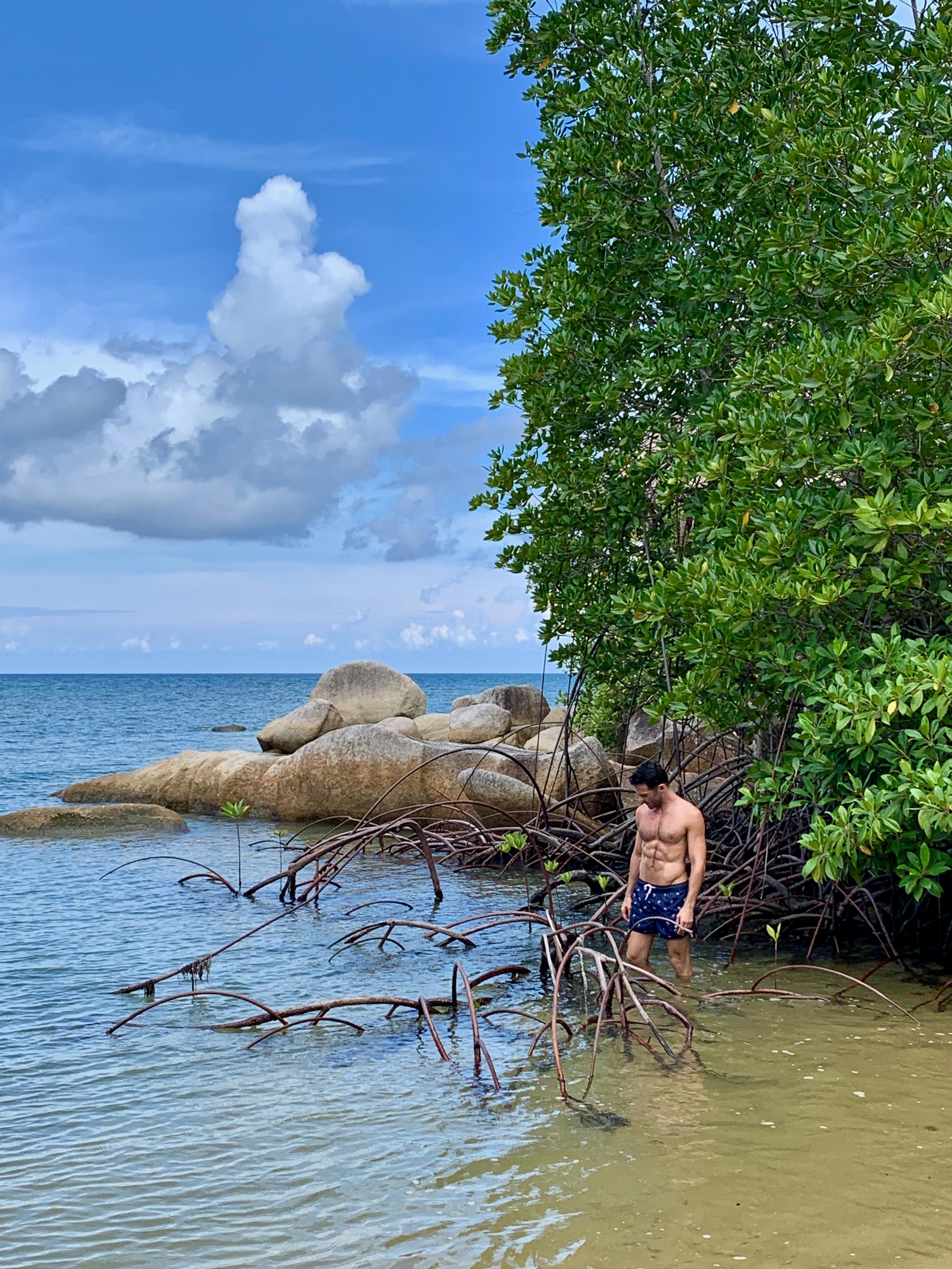 Cempedak Island Indonesia private island mangroves Justin Walter