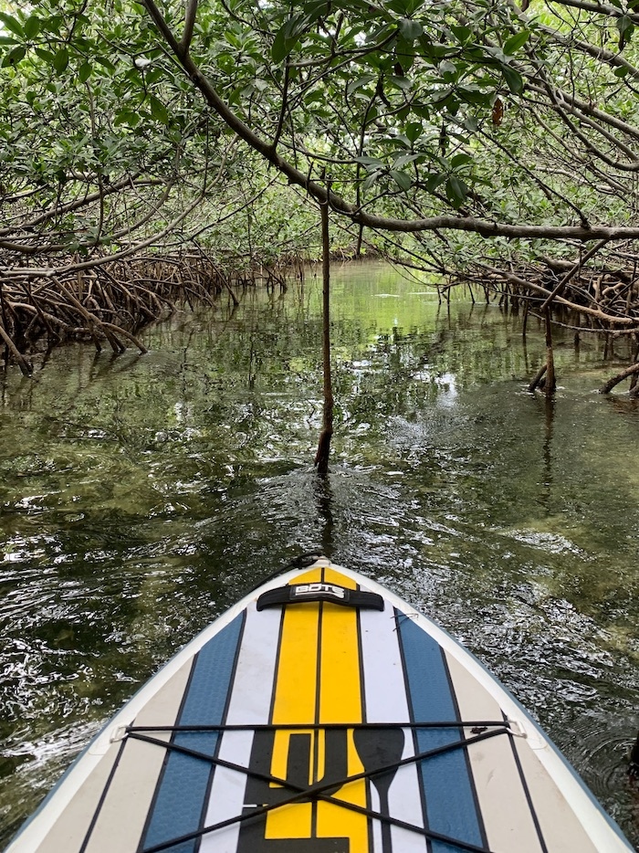 stand up paddle boarding key biscayne national park