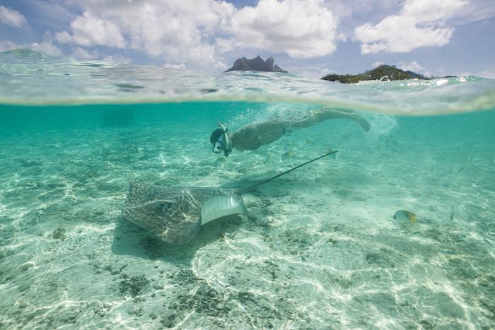 Islands of Tahiti Justin Walter manta rays bora bora