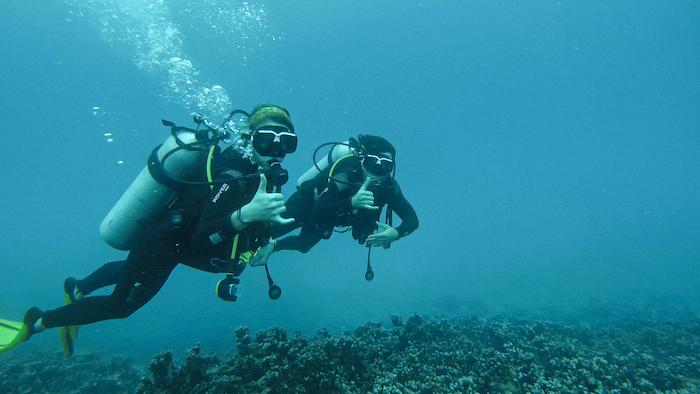 Islands of Tahiti Noel Morrison Justin Walter